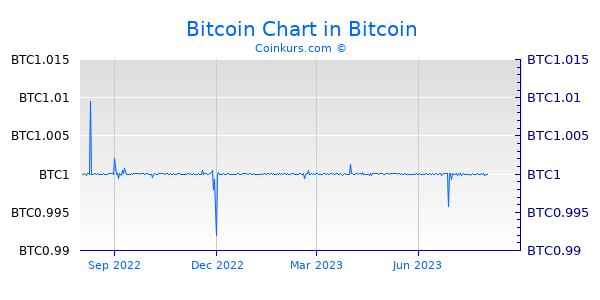 Bitcoin Chart 1 Jahr